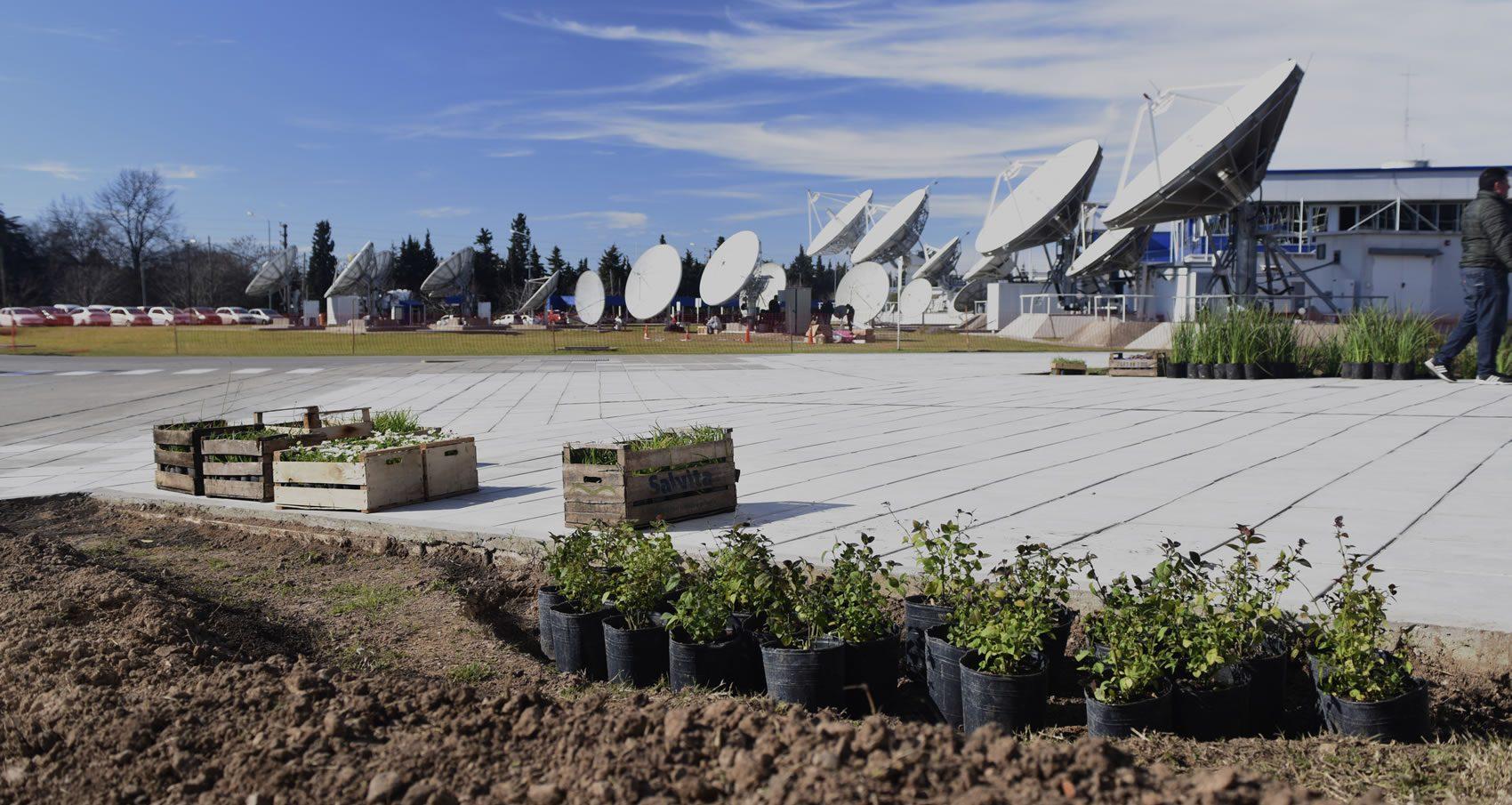 Cajones y macetas con plantas, previo a ser colocadas en un cantero. Al fondo se ven las antenas parabólicas en la Estación Terrena de Benavídez.